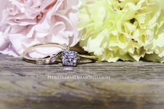 Solitaire Diamond, Diamond Engagement Rings, Wedding Rings, Jewelry, Jewlery, Bijoux, Jewerly, Engagement Rings, Diamond Engagement Ring