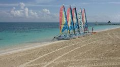 Sandals Montego Bay: watersports