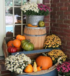 11 Breathtaking Mum Pictures That'll Get You Crazy Excited for Fall