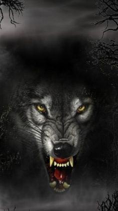 Free images about Wolf - MobDecor Iphone 5 Wallpaper, Wolf Wallpaper, Wolf Tattoos, Angry Wolf, Wolf Tattoo Sleeve, Wolf Images, Werewolf Art, Fantasy Wolf, Wild Wolf