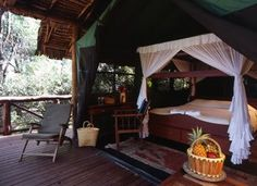 Tent at Samburu Intrepids Camp, Kenya - where the cheeky monkeys unzipped our tent!