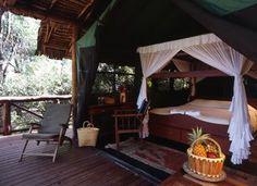Tent at Samburu Intrepids Camp, Kenya - where the cheeky monkeys unzipped our tent!