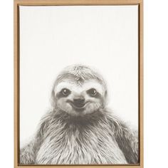 DSOV Sylvie 'Sloth and Portrait' by Simon Te Tai Framed Photographic Print on Wrapped Canvas Frame Color: Natural