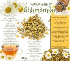 Healthy Benefits of Chamomile (Apple Chamomile Tea Recipe Included!)