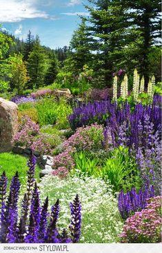 Stunning Colorado rustic landscape idea - All About Garden Colorado Landscaping, Rustic Landscaping, Landscaping Tips, Garden Landscaping, Landscaping Melbourne, Landscaping Software, Landscape Edging, Mountain Landscape, Traditional Landscape