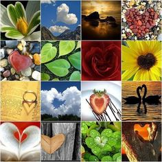 Images of hearts in nature. Images of hearts in nature. God's Heart, I Love Heart, Key To My Heart, Heart Art, Happy Heart, Collage Nature, Heart Collage, My Funny Valentine, Valentines