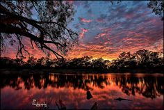 Sunrise - Murrumbidgee River, Hay, NSW
