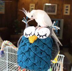 Owl Amigurumi Pillow w Crocodile Stitches