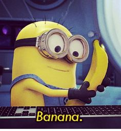 "I want 2 pet minions becuz i would say ""whoever wins the fight gets this banana"" and i would laugh and give the looser da banana. Lol"