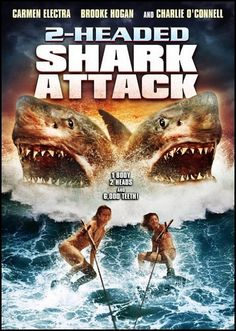 2 headed shark attack...best part is the beginning kill scene.  the rest was a waste of my life.