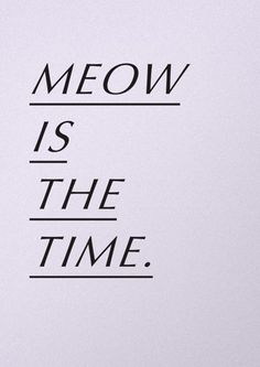 MEOW IS THE TIME.  ~kitty
