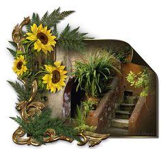 Grapevine Wreath, Grape Vines, Wreaths, Autumn, Pretty, Plants, Blog, Painting, Decor