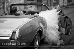 Oldsmobile bob-photos.com