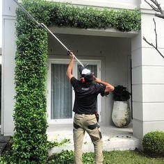 Garden Society (@gardensociety) • Instagram photos and videos Outdoor Spaces, Outdoor Power Equipment, Photo And Video, Climbers, Videos, Garden, Interior, Photos, House