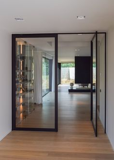 "Double ""steel look"" pivot door"