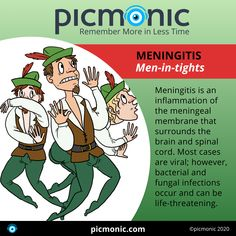 In under 2 minutes you can learn how to assess for Meningitis with this Picmonic and ace your next exam! Fundamentals Of Nursing, Fungal Infection, Critical Care, Assessment, Medicine, Learning, Nursing Fundamentals, Medical, Medical Technology