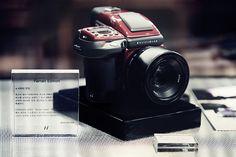 A winning combination, the Hasselblad Ferrari Limited Edition camera Seoul Seoul, Ferrari, Luxury, Bags, Handbags, Taschen, Purse, Purses, Totes