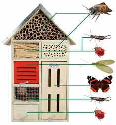 Esschert Design Insektenhotel L Nistkasten Nisthöhle x x cm NEU Slugs In Garden, Garden Bugs, Garden Insects, Garden Plants, Bug Hotel, Carpenter Bee Trap, Garden Projects, Diy Projects, Bee House