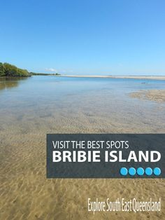 Favourite spots on Bribie Island South Island, Island Beach, Play And Stay, New Zealand Travel Guide, Australia Travel Guide, Great Barrier Reef, Queensland Australia, Sunshine Coast, Travel Articles