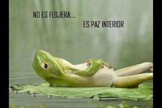 No es flojera, es paz interior. Via @gotzongonzalez