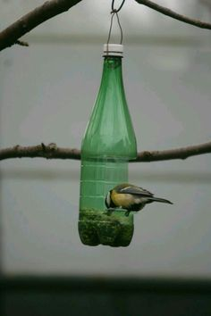 Recycled crafts for kids and adults handmade bird feeders recycling plastic bottles – Artofit Bird Feeder Craft, Garden Bird Feeders, Bird House Feeder, Homemade Bird Houses, Homemade Bird Feeders, Bird Houses Diy, Plastic Bottle Crafts, Recycle Plastic Bottles, Garden Crafts
