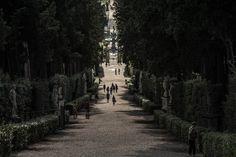 Pisa&Firence by NastPlas