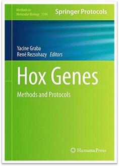 Methods in Molecular Biology Vol.1196 Hox Genes Methods and Protocols   Sách Việt Nam
