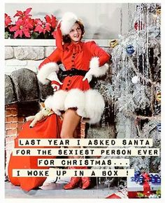 Last year I asked Santa for the sexiest person ever for Christmas. I woke up in a box - vintage retro funny quote