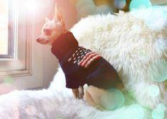 American Deluxe Wool Sweater. Pris: 399,-  www.glamdog.org