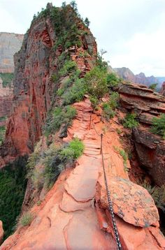 ANGELS LANDING in Zion National Park – Check! - - It's by far the most notorious hike to do in ZNP! Because not everyone makes it off alive! I've included a detailed description of this infamous hike so you can get an idea o…. Cool Places To Visit, Places To Travel, Travel Destinations, Arches Nationalpark, Utah Vacation, Vacation Ideas, Destination Voyage, Us National Parks, Travel Usa