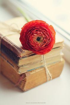 Give them a flower and they'll follow you anywhere, but add a book to that and they'll stay.