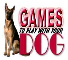 Games To Play With Your Dog...How to keep your dog mentally stimulated. Yes, I'm re-pinning this. Judge me.