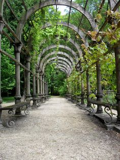 Pergola, this is lovely!