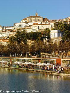 Parque da Cidade - Coimbra - Portugal | Flickr – Compartilhamento de fotos!