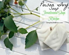Poison Ivy Soap Recipe with Jewel Weed - a natural remedy for posion ivy, oak, and sumac. Helps stop it from spreading or breaking out in the first place