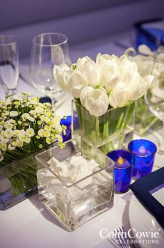 White tulips look extra chic placed in square vases at this modern table setting.