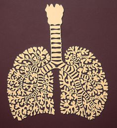 Papercut lungs and windpipe