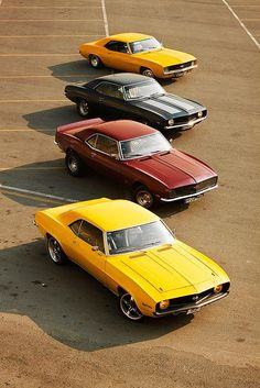 Camaros Galore...I would die to have one.. I get it from my daddy