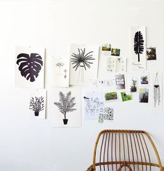 ooh love these black leaf illustrations