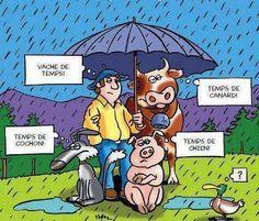 Le mauvais temps!