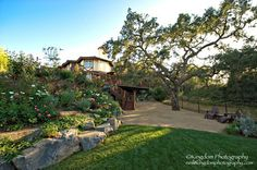 Terraced Outdoor Rooms, Lifescape Designs in Simi Valley, CA