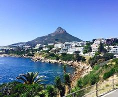 View walking towards Camps Bay from Bakoven. Lucky enough to walk this daily! Around The World In 80 Days, Around The Worlds, Heart Place, Cape Town South Africa, Fish Tanks, Most Beautiful Cities, Camps, Holiday Destinations, Walking