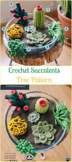 Crochet Succulents Free Patterns - Crochet Plant Free Patterns