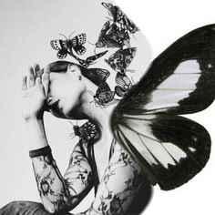 An Exquisite Paradox Madame Butterfly, Butterfly Kisses, Butterfly Art, Butterflies, Glass Photography, Film Photography, Hairstylist Quotes, Butterfly Fashion, Monochrome Photography