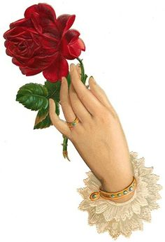 Red Rose in Lace-Cuffed Hand from Back Porch Graphics