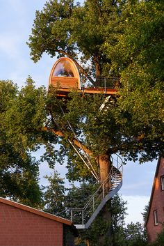 Baumraum | Around the Oak Stunning #TreeHouse located 11 meters above ground, just in the clouds of Germany #WoodLovers