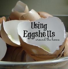 A bunch of interesting uses for eggshells!