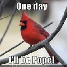 Haha lol...catholic humor!