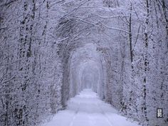 tunnel of love Ukraine winter most beautiful places eastern Europe Snow Scenes, Winter Scenes, How Beautiful, Beautiful Images, Beautiful Ruins, Tunnel Of Love Ukraine, Places To Travel, Places To See, Time Travel