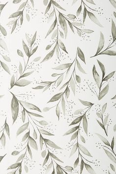 Magnolia Home Olive Branch Wallpaper by in Black, Wall Decor at Anthropologie wallpaper diy engine design top 10 wallpapers how to wall decor anime music im Cute Wallpaper Backgrounds, Pretty Wallpapers, Home Wallpaper, Iphone Wallpapers, Simple Wallpapers, Wallpaper Quotes, Trendy Wallpaper, Wallpaper Wallpapers, Phone Backgrounds